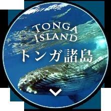 トンガ諸島