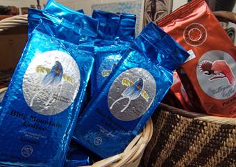 高品質のゴロカコーヒーは大人気