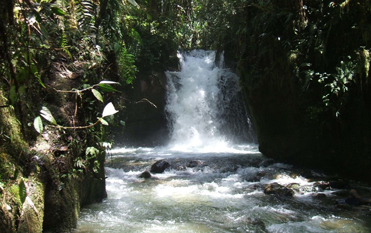 カベベ村の滝ネイチャーウォーク
