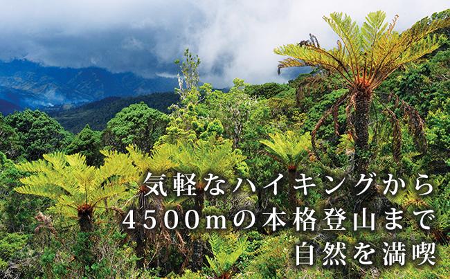 気軽なハイキングから4500mの本格登山まで自然を満喫